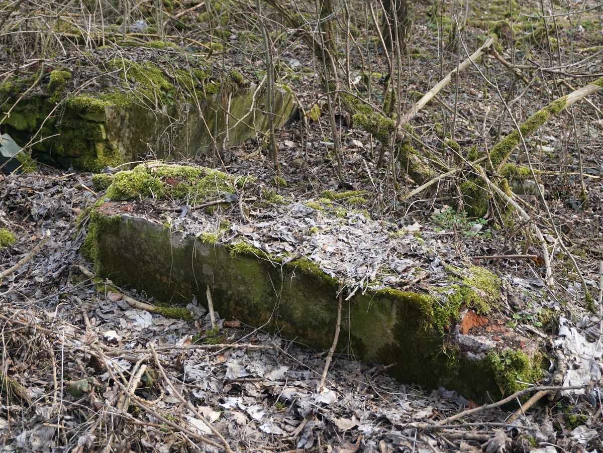 Mietlica, pozostałości zabudowań folwarcznych